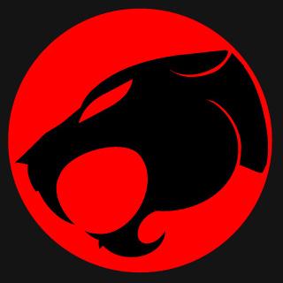 Image result for thundercats logo